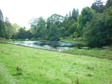 images/stourhead-top-lake.jpg