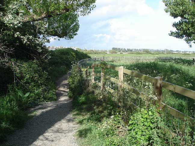 The winding path leading across marshland to Hengistbury Head